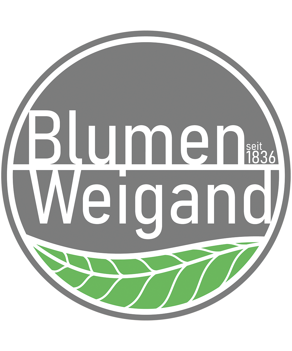 Blumen Weigand Bad Soden